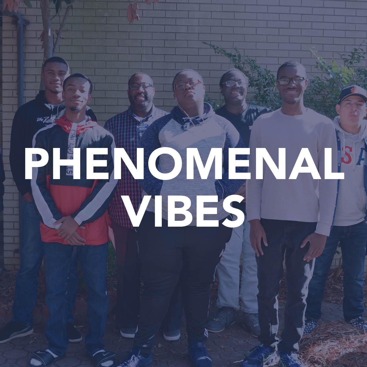 Phenomenal Vibes